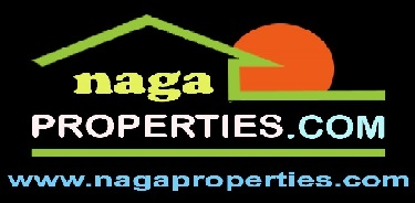 Naga City Real Estate